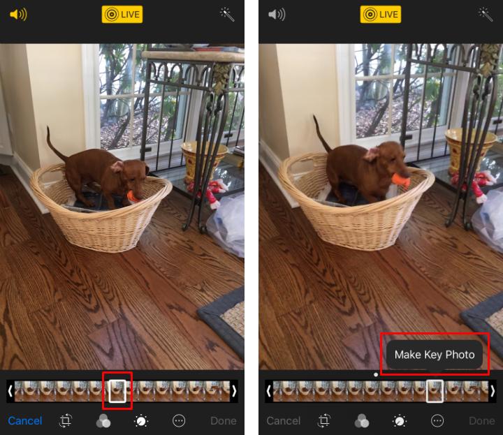 Cómo cortar Live Photos y cambiar la foto clave en el iPhone y el iPad.
