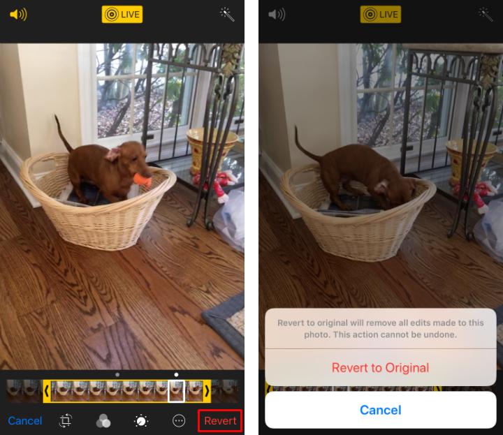 Como recortar Live Photos y cambiar la foto clave en el iPhone y el iPad.