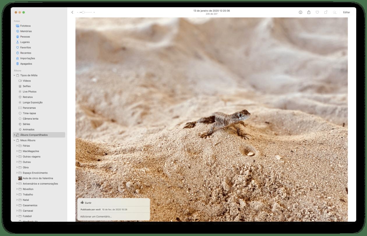 Álbumes compartidos en macOS Photos