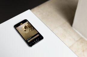 Cómo se cambia la foto clave de una Live Photo iOS y Mac