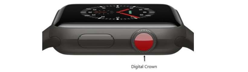 Apple Watch Steps
