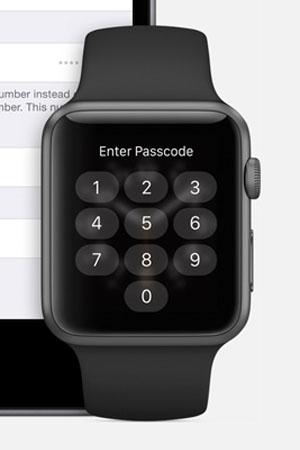 Seguridad Apple Watch